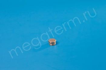 "Латунь. Заглушка Нар. Резьба Ду 20 (G 3/4"") - Производство и продажа полипропиленовых труб «МегаТерм»"